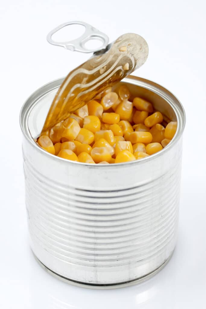 Home Care in Newport Coast CA: Benefits of Canned Food