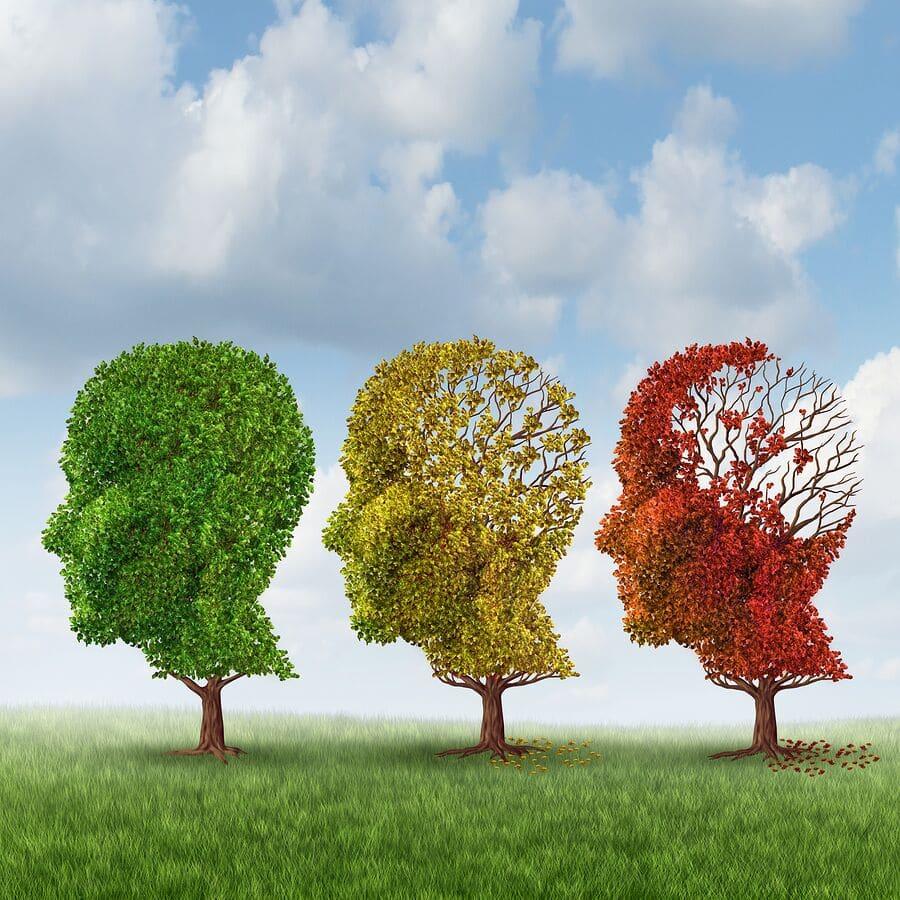 Elderly Care in Newport Beach CA: Reversing Memory Loss